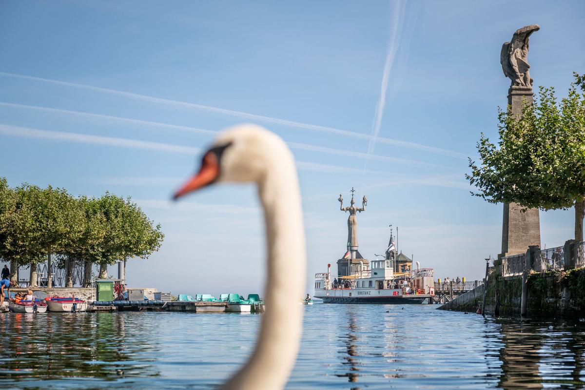 Konstanz-Hafen-Alte-Faehre-Bodensee-Imperia-Schwan-02_Copyright_MTK-Dagmar-Schwelle