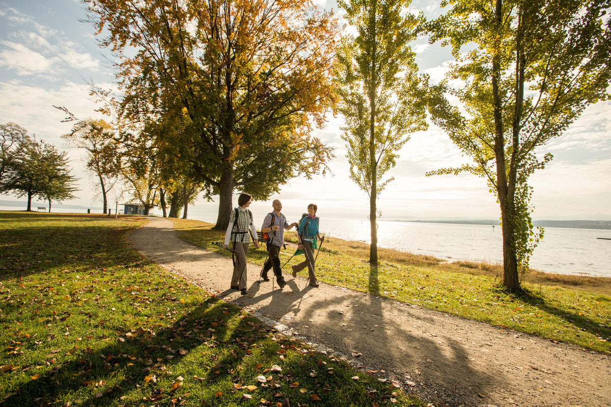 Konstanz-Bodensee-Seeuferweg-Hoernle-Seegang-Wandern-Herbst-10_Copyright_MTK-Ulrike-Klumpp