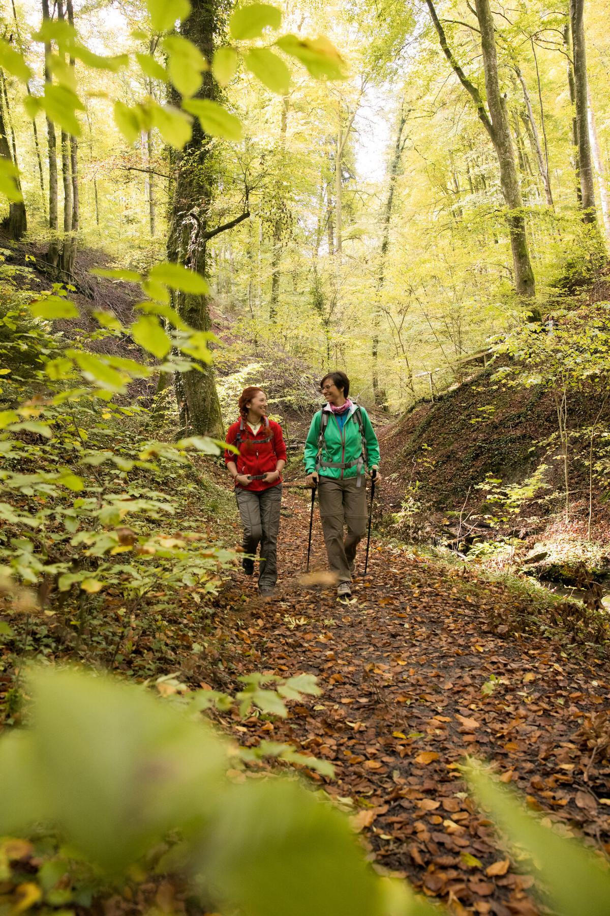 Konstanz-Region-Wald-Wandern-104_Copyright_MTK-Ulrike-Klumpp