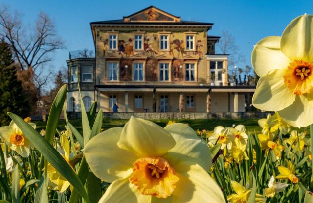 Konstanz-Villa-Prym-Maigloeckchen-Fruehling_Copyright_MTK-Chris-Danneffel