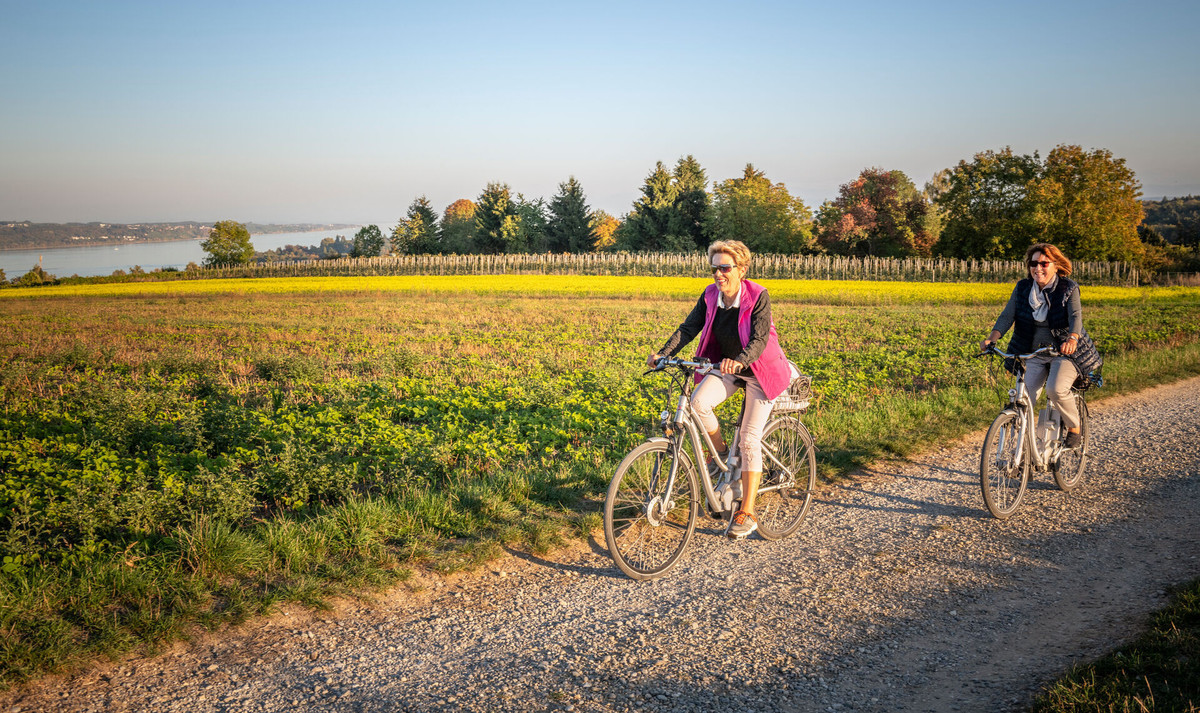 Konstanz-Ausflug-Radtour-Vororte-Rapsfeld-02_Herbst_Copyright_MTK-Dagmar-Schwelle