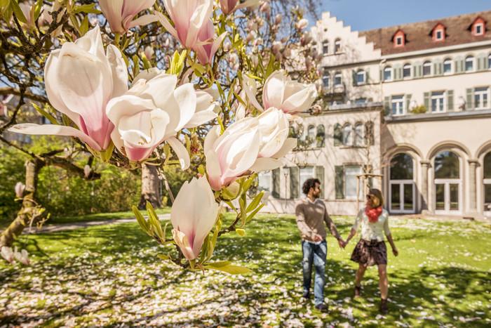 Konstanz-Inselhotel-Garten_Fruehling_Copyright_MTK-Dagmar-Schwelle
