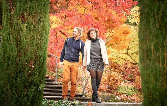 Konstanz-Insel-Mainau-Treppe-Paerchen-Querformat-02_Herbst_Copyright_MTK-Hari-Pulko